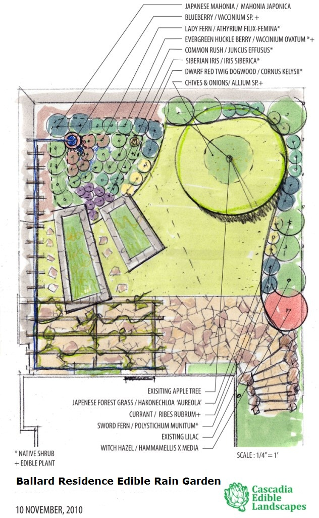 Designing Garden Layout I M Loving The Curves In This: Cascadia Edible Landscapes
